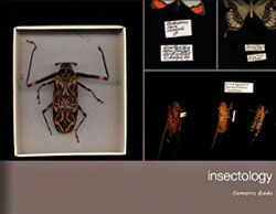 Insectology
